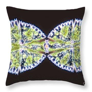 Micrasterias Apiculata Throw Pillow by MI Walker