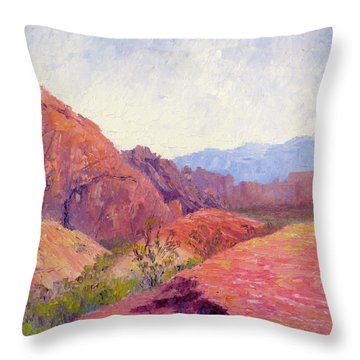 Mid Day Valley Of Fire Throw Pillow by Terry  Chacon