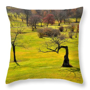 Middle Earth Throw Pillow by Joshua McCullough