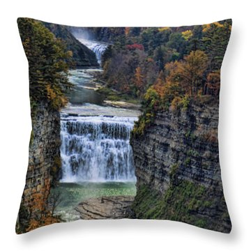 Throw Pillow featuring the photograph Middle Land by Tammy Espino
