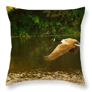 Midmorning Launch Throw Pillow by Susan Capuano
