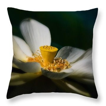 Throw Pillow featuring the photograph Midnight Blur by Travis Burgess