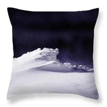 Midnight In January Throw Pillow by Susan Capuano
