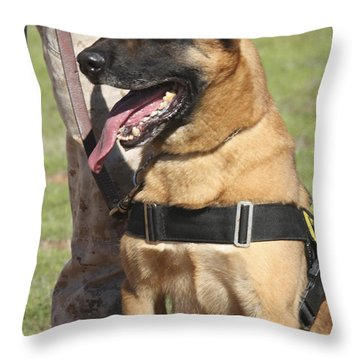 Military Working Dog Pants In The Hot Throw Pillow by Stocktrek Images