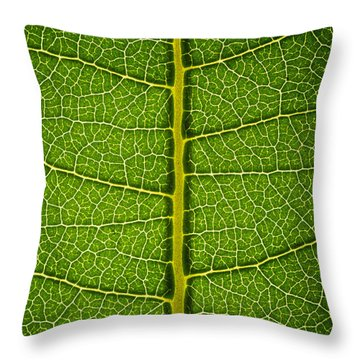 Milkweed Leaf Throw Pillow by Steve Gadomski