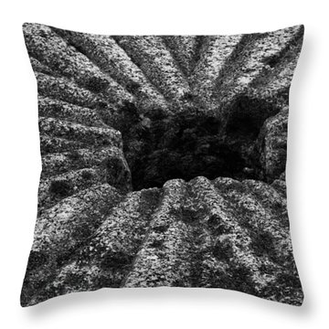 Mill Stone Throw Pillow by Carrie Cranwill