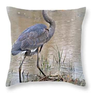 Mingo Great Blue Throw Pillow by Marty Koch