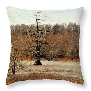 Mingo Swamp 1 Throw Pillow by Marty Koch