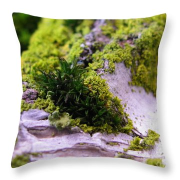Mini Earth Throw Pillow by Tina Marie