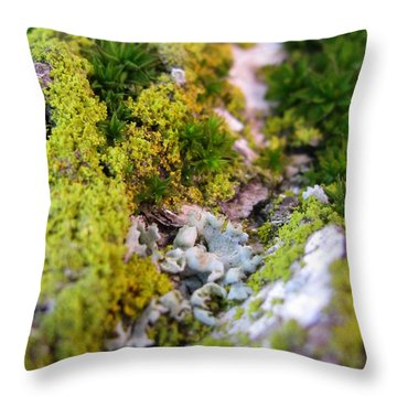 Mini Planet Throw Pillow by Tina Marie