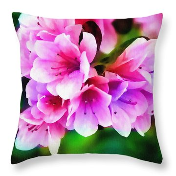 Throw Pillow featuring the photograph Miniature Azaleas by Judi Bagwell