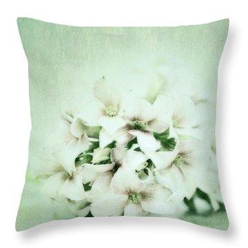 Mint Green Throw Pillow by Priska Wettstein