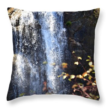 Mirabeau Falls Throw Pillow by Greg Patzer