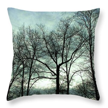 Throw Pillow featuring the photograph Mirage In The Clouds by Pamela Hyde Wilson