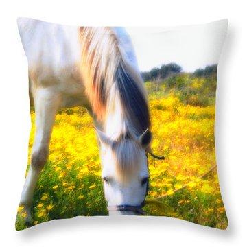 Mirage Throw Pillow by Stelios Kleanthous