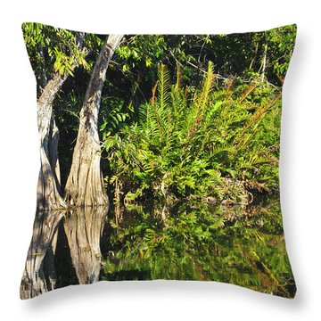 Throw Pillow featuring the photograph Mirror Pond by Anne Mott