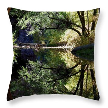 Throw Pillow featuring the photograph Mirror Reflection by Tam Ryan
