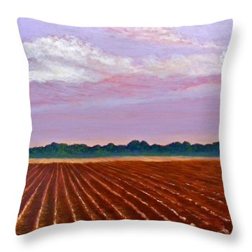 Mississippi Land And Sky Throw Pillow