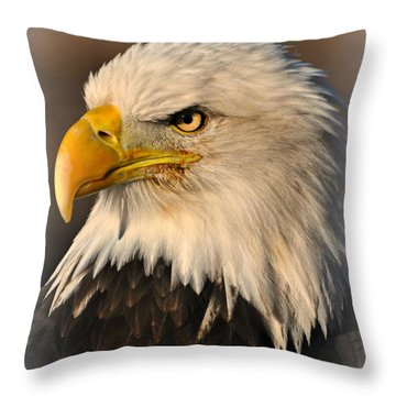 Misty Eagle Throw Pillow by Marty Koch
