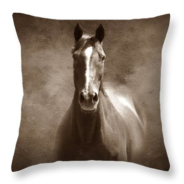 Misty In The Moonlight S Throw Pillow