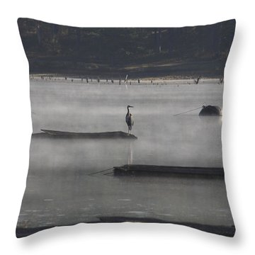 Misty Morning At Lake Wilhelmina Throw Pillow by Douglas Barnard