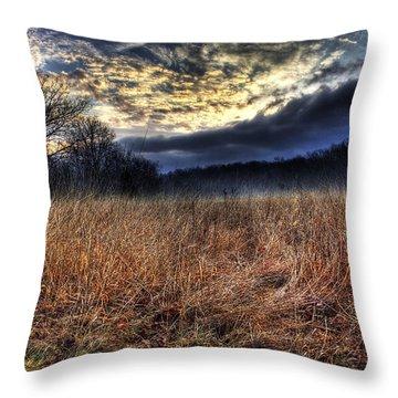 Misty Sunrise Throw Pillow by Mark Six