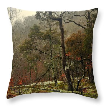 Misty Tree Throw Pillow by Marty Koch