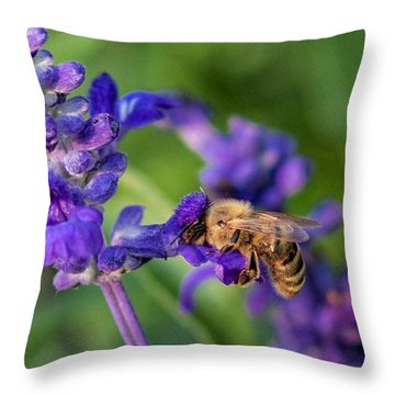 Throw Pillow featuring the photograph Mmmm Honey by Tom Gort
