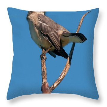 Mock One Throw Pillow