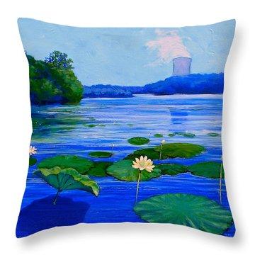 Modern Mississippi Landscape Throw Pillow
