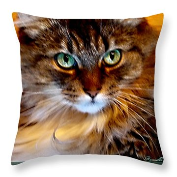 Molly Throw Pillow by Danielle  Parent
