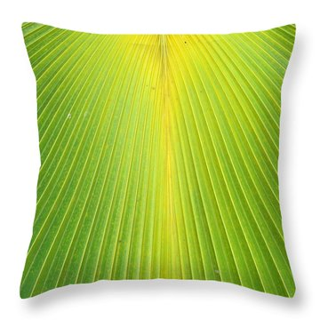 Molokai Palm Fan Throw Pillow