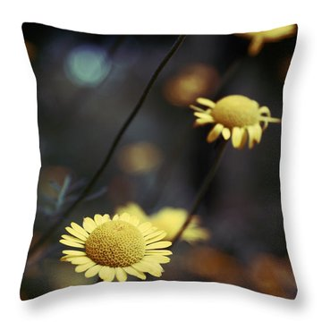 Momentum 01-02a Throw Pillow by Variance Collections