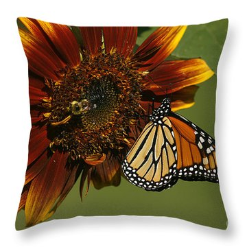 Monarch And The Bee Throw Pillow