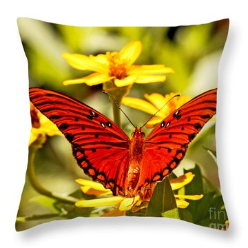 Throw Pillow featuring the photograph Monarch Butterfly  by Luana K Perez
