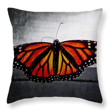 Throw Pillow featuring the photograph Monarch by Julia Wilcox