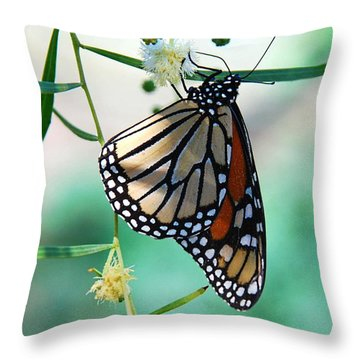 Throw Pillow featuring the photograph Monarch by Tam Ryan
