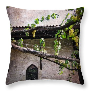 Monastery Garden Throw Pillow