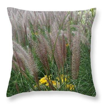 Throw Pillow featuring the photograph Monastery Garden by John Schneider