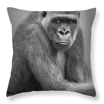 Monkey Throw Pillow by Darren Greenwood