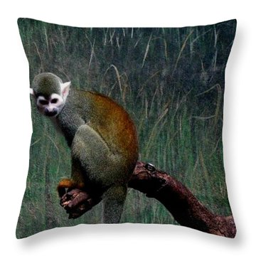 Throw Pillow featuring the photograph Monkey by Maria Urso