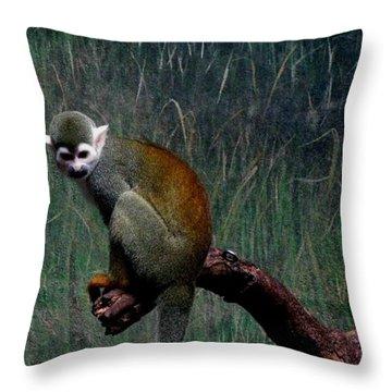 Monkey Throw Pillow by Maria Urso