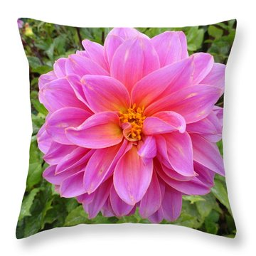 Monterey Pink Throw Pillow