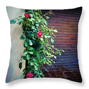 Moody Roses Throw Pillow by Silvia Ganora