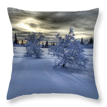 Throw Pillow featuring the photograph Moody Snow Scene by Michele Cornelius