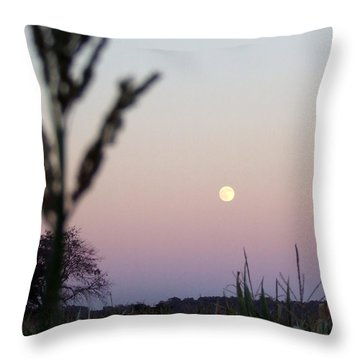 Moon Throw Pillow by Andrea Anderegg