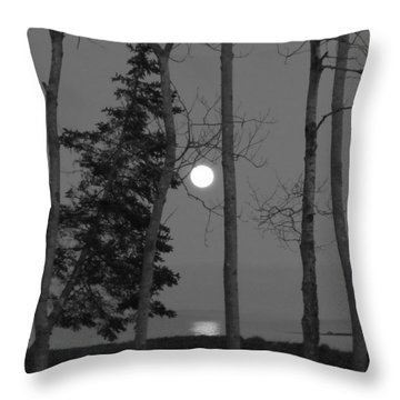 Throw Pillow featuring the photograph Moon Birches Black And White by Francine Frank