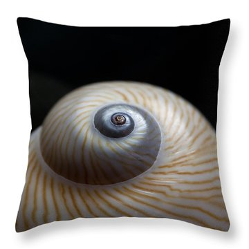 Moon Shell Throw Pillow by Carol Leigh