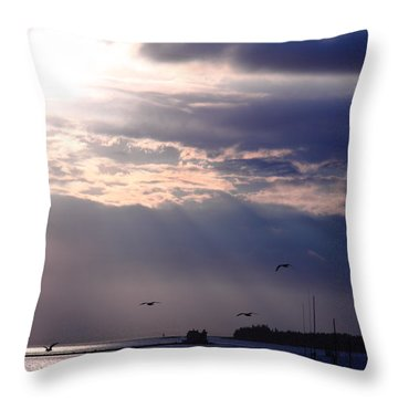 Moonlight Flight Throw Pillow