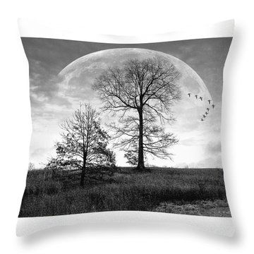 Moonlit Silhouette Throw Pillow by Brian Wallace